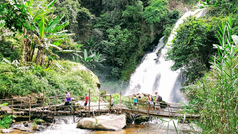 Doi Inthanon National Park - Trekking