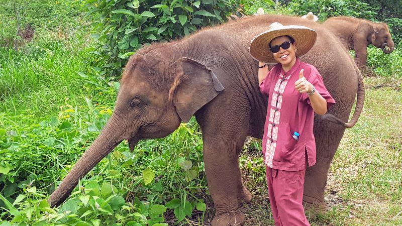 Elephant Rescue Park - Baby Elephant