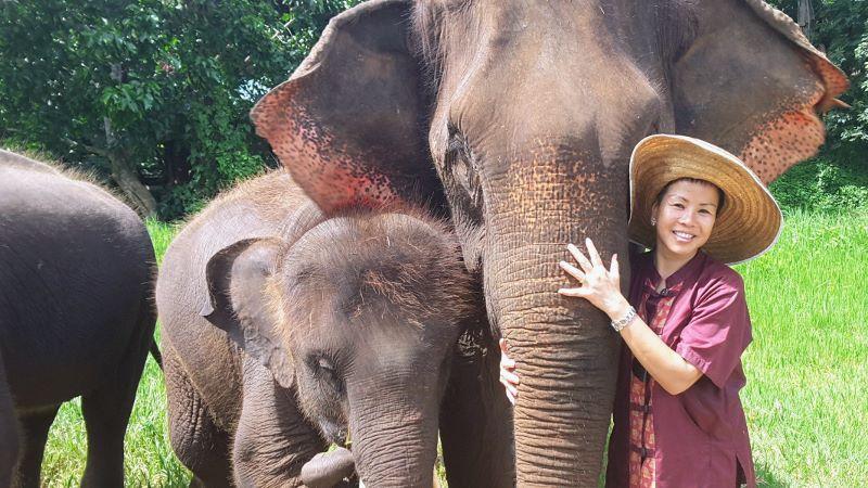 Elephant Rescue Park - Hugging Elephant Trunk