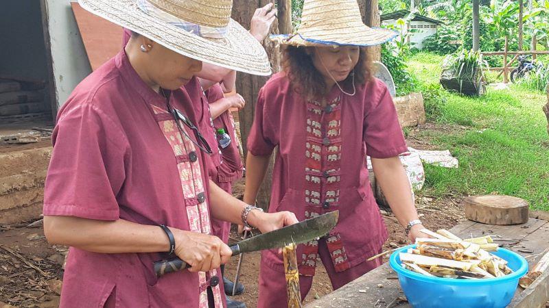 Elephant Rescue Park - Chopping Sugar Cane