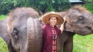Elephant Rescue Park Chiang Mai
