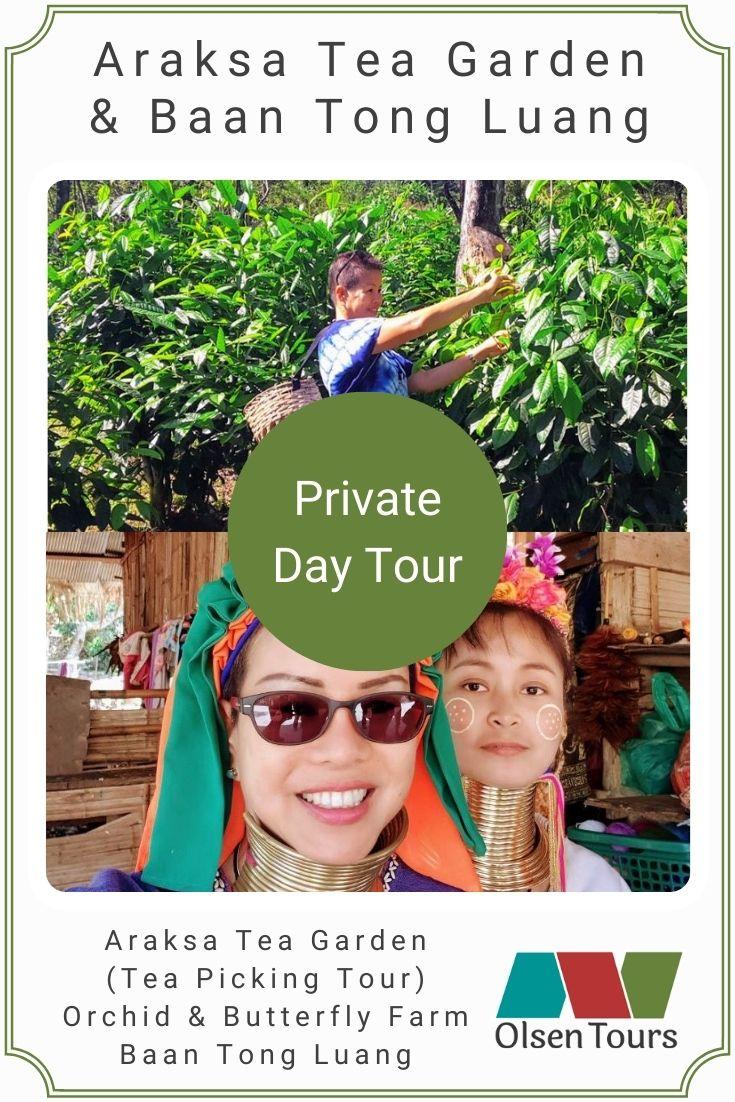 Araksa Tea Gardens & Baan Tong Luang: Private Day Tour