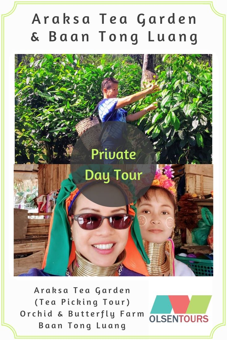 Araksa Tea Gardens & Baan Tong Luang: Private Day Tour