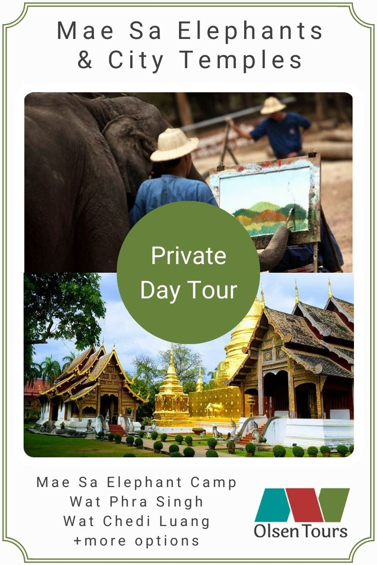 Mae Sa Elephant Camp & City Temples Private Day Tour