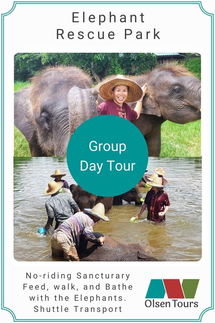 Elephant Rescue Park Group Tour