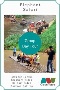 Elephant Safari Group Tour
