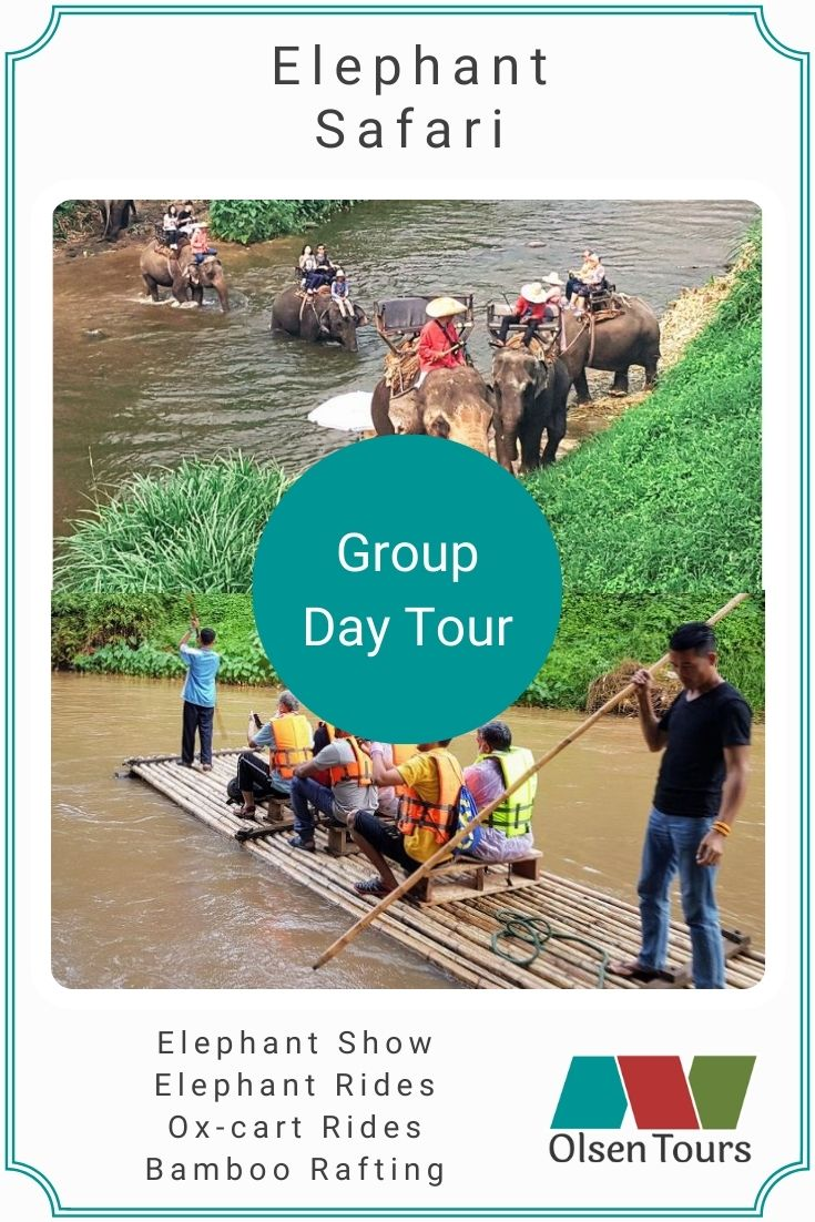 Elephant Safari Group Tour