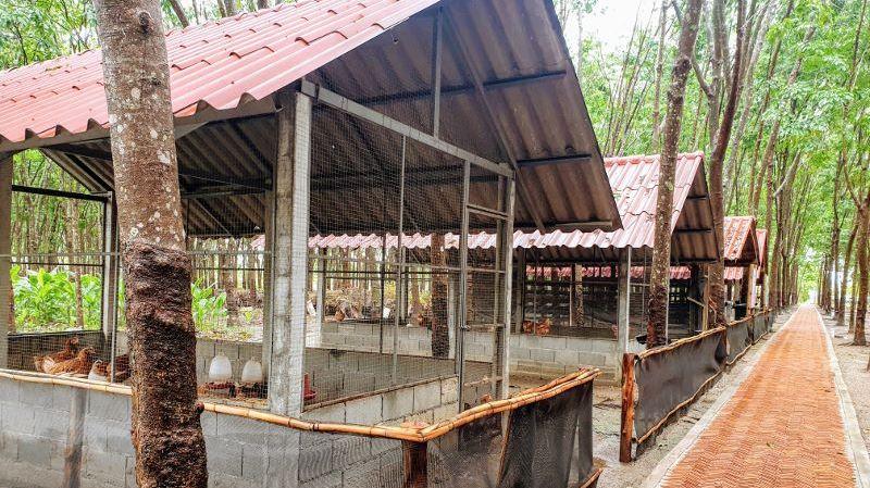 Inspire Project (Kamlangjai) Chiang Rai