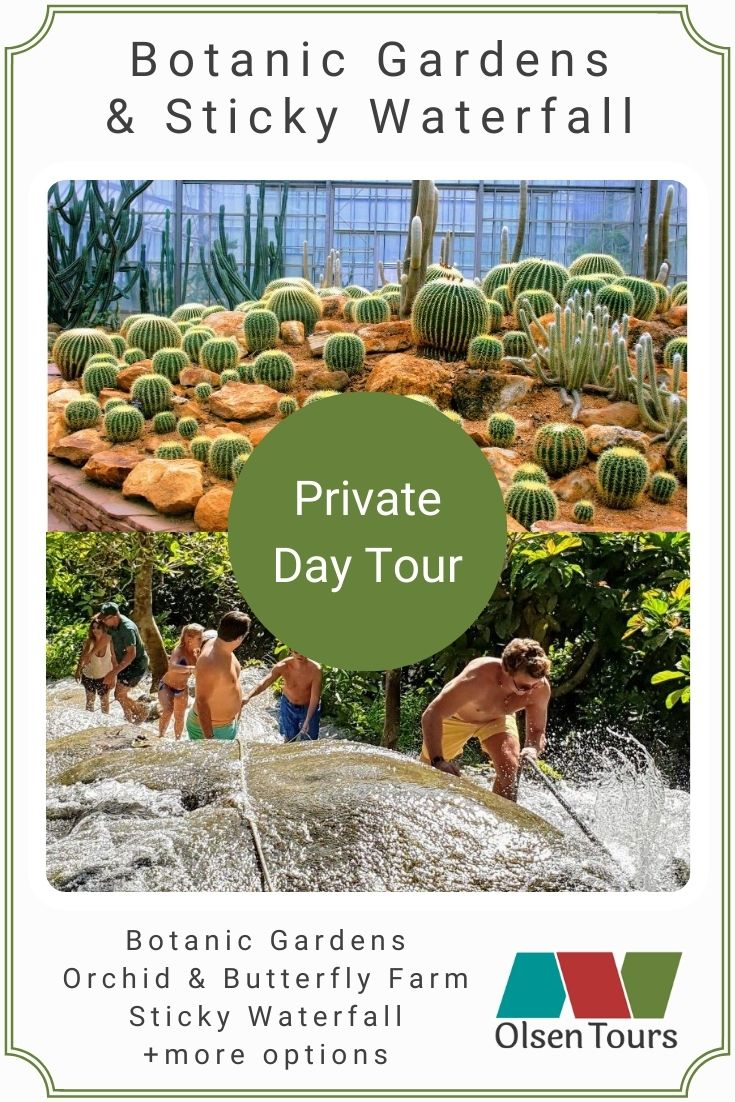 Queen Sirikit Botanic Gardens & Bua Tong Sticky Waterfall: Private Day Tour