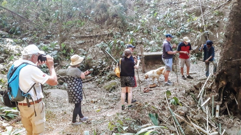 Trekking with local Lahu guide at Ban Cha Cho