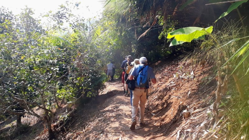 Trekking through lychee orchard at Ban I-Ko Nam Tok