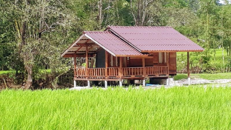 Mae Klang Luang Hill accommodation