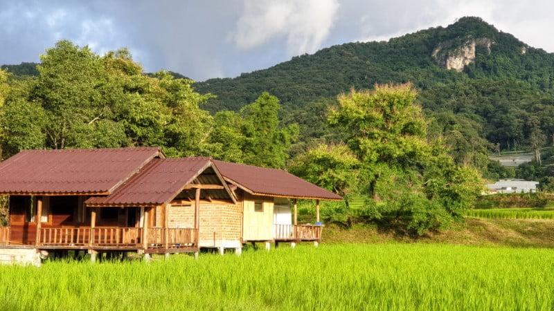 Bungalows at Mae Klang Luang Hill