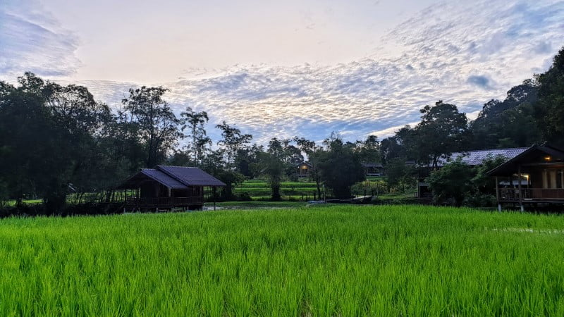 Evening view at Mae Klang Luang Hill